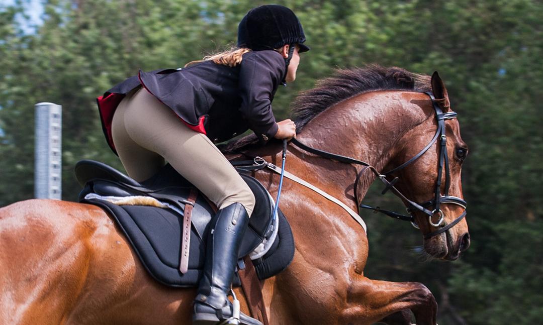 15th May-  Horse & Pony SJ Training (Arena 2)- Start Lists