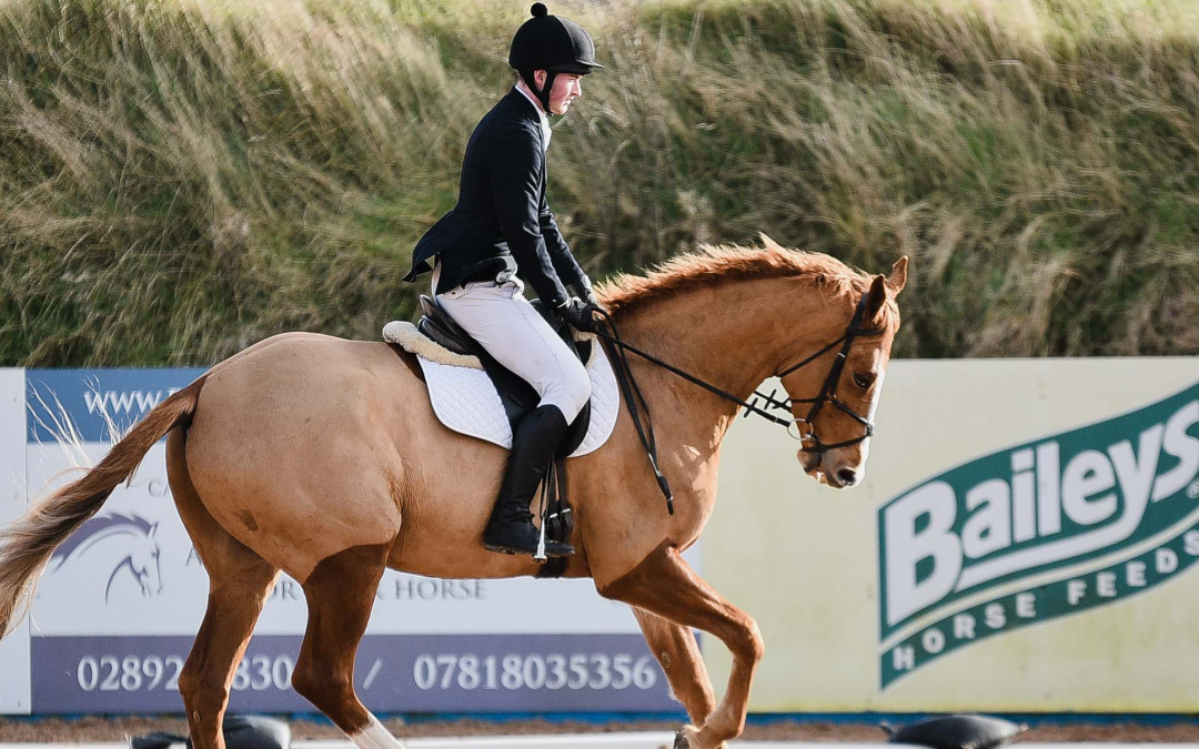 FLEXI EVENTING DRESSAGE TIMES FOR 15th February 2020