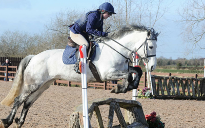 Denis Crowned Baileys Horse Feeds Flexi Eventing Champion for 2020 – Results – 7th Mar